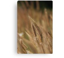 I love Grass. Canvas Print