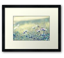 The whispers in the morning Framed Print