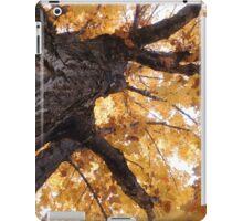 Northland Autumn Series 1 iPad Case/Skin