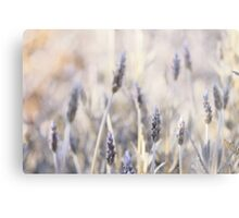 Have you ever had a dream? Metal Print