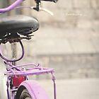 Bicycle Barcelona by Lili Ana