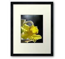 A Jonquil Morning Framed Print