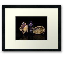 Jelly Shells Framed Print