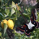 Lemons For U2  by Eric Kempson