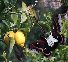 Lemons For U2  by Eric Kempson