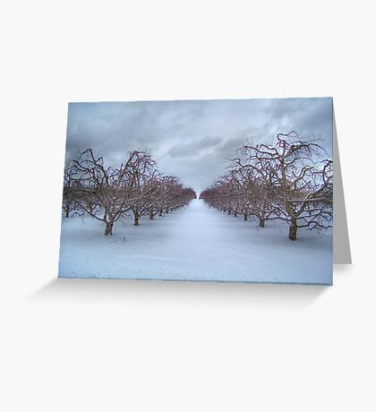 Peach Orchard Snow  Greeting Card