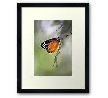 The Butterfly Effect. Framed Print