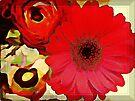 Vintage red by KatarinaD