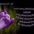 Phillipians 4:16 by Deborah McLain