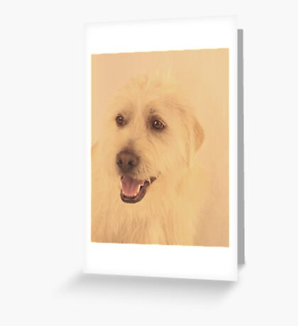 Parker ~ Greeting Card
