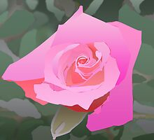 A Pink Rose by Kashmere1646