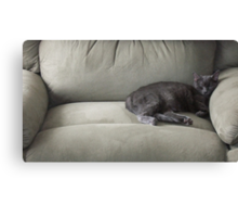 The Tiny Queen Of The Big Chair Canvas Print