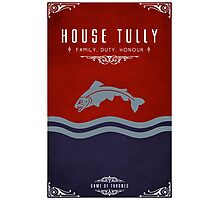 House Tully Photographic Print