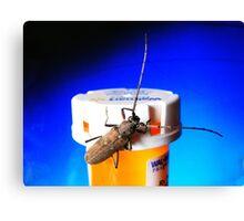 Bug on Drugs (:>) Canvas Print