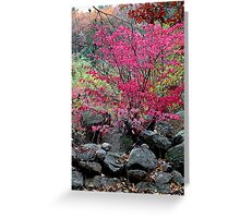 Stone wall and autumn color Greeting Card