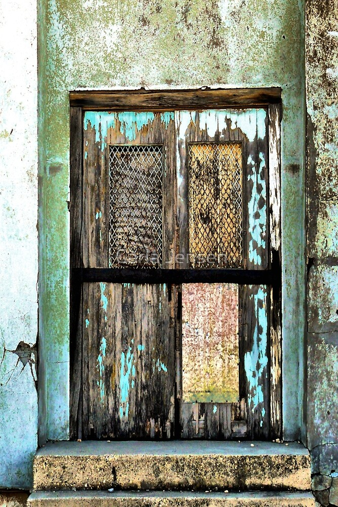 Door To The UnKnown by Carla Jensen