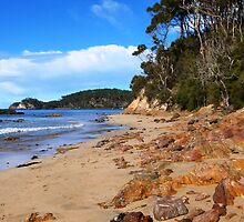 Denhams Beach ... New South Wales by Trish Meyer