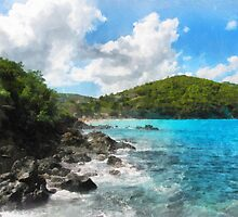St. Thomas Shoreline by Susan Savad