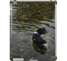 Crystal Clear Water Play - Cute Puppy In The River iPad Case/Skin