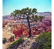 Canyon View Photographic Print