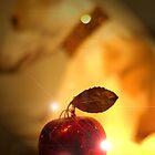 The Ruby Apple by Shirin Hodgson-Watt