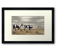 Lauri's Wild Horses Framed Print