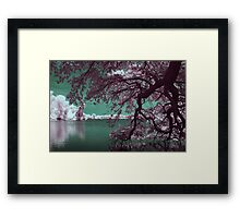 Our Special Spot Framed Print