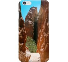 Valley Walls iPhone Case/Skin