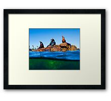 Another Day At The Rock Framed Print