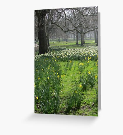 Green Park London Bare Trees and Flowers Greeting Card