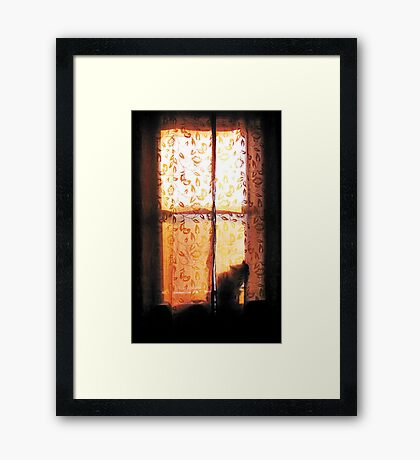 In the Glow of Day Framed Print