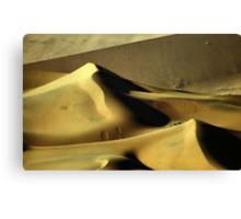 Golden Dunes, Namibia Canvas Print