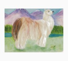 Alpaca Llama Mountains Cathy Peek Animal Art Baby Tee