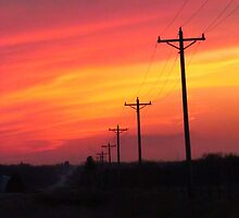 Electrifying Colors by lorilee