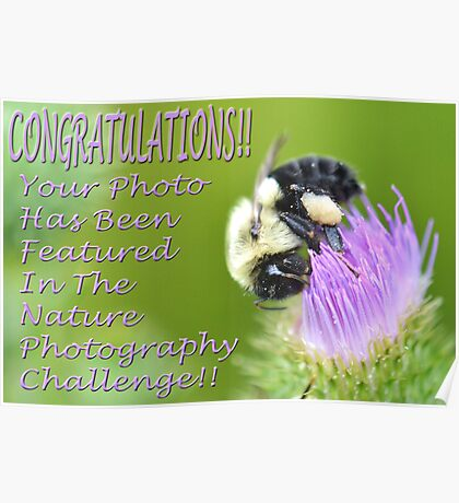 Nature Photography Challenge Banner Poster
