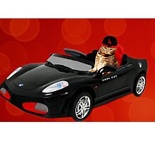 ☁ ☂  COOL CAT IN HIS COOL CAR ☁ ☂   Photographic Print