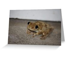 Please don't hurt me ... I'm innocent! Greeting Card