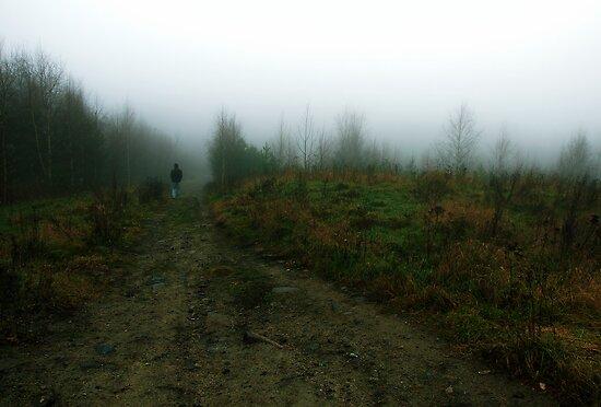 Walking from the fog by Samuel Glassar