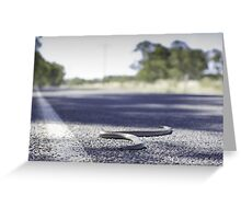 Road Kill Greeting Card