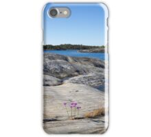 Archipelago landscape. iPhone Case/Skin