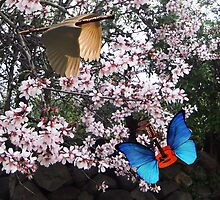 Springtime Serenade   by Eric Kempson