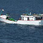 Fishing Trawler by ScenerybyDesign
