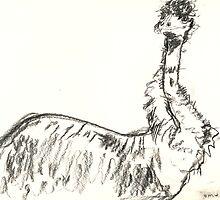Bemused Emu by WoolleyWorld