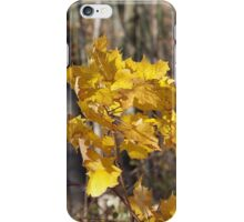 maple gold iPhone Case/Skin