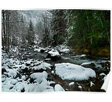 Snow At Smith River Poster