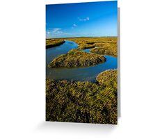Backwaters Greeting Card