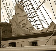Folded Sails by debidabble