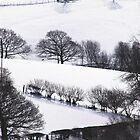 Winter landscape Wales UK by sloweater
