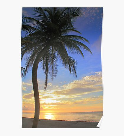 Palm Tree at Sunrise  on the Beach Poster