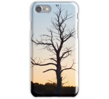 Home to Roost iPhone Case/Skin